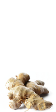 Fresh root ginger (thumbnail sized) image
