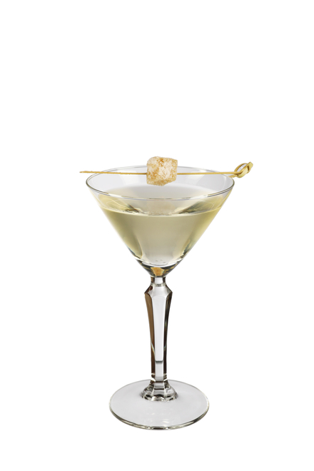 Ginger 'Martini' image