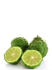 Kaffir lime (fresh fruit)